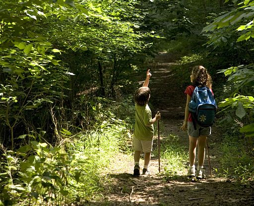 Backpacking With Your Kids